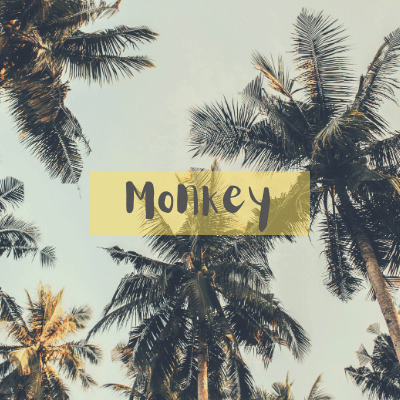 toplining instrumental track cover art of Monkey