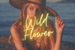 toplining instrumental track cover art of Wild Flower